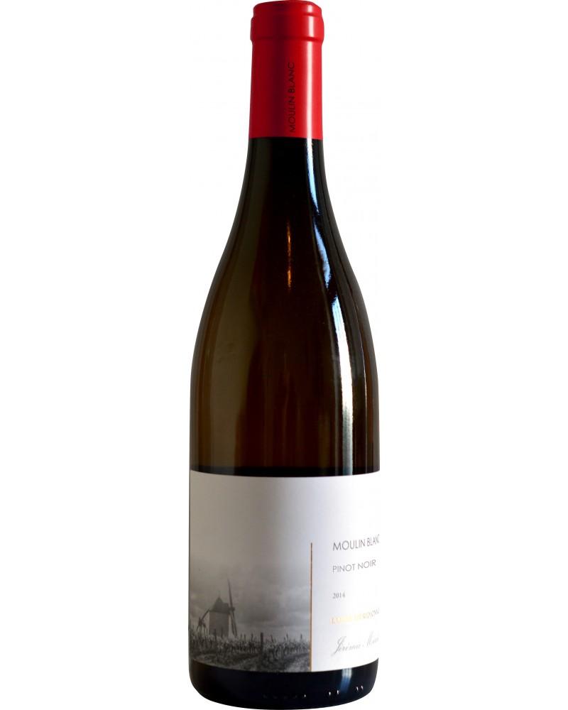IGP Val de Loire Vendée - Moulin Blanc pinot noir - Rouge 75 cl