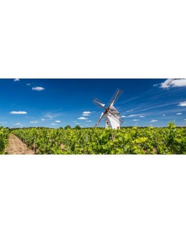 IGP Val de Loire Vendée - Moulin Blanc de noirs - 75 cl